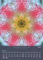 imagami-Kalender-2018-05