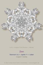 16-Zinn-0007er