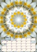 05-Tierkreis-Kalender-