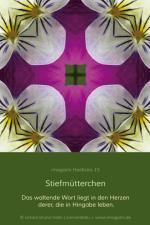 HeilKreis-fbg0015