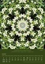 03-imagami-Kalender-2020
